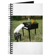Cute Conure Journal
