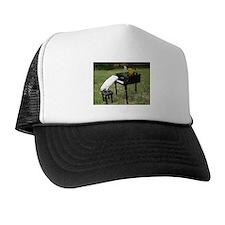 Cute Quaker parrots Trucker Hat