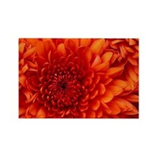 Red flower  Rectangle Magnet