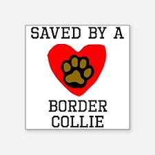Saved By A Border Collie Sticker