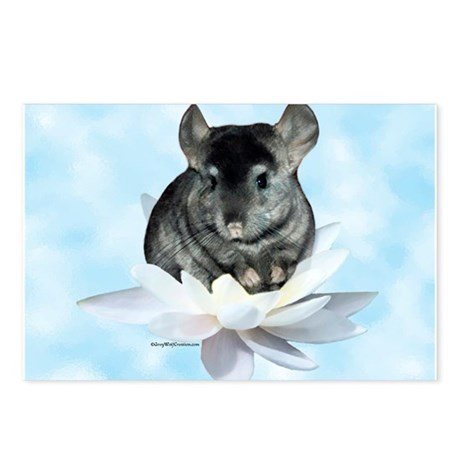 Chin Lily Blue Postcards (Package of 8)