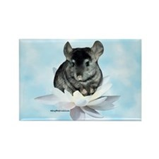 Chin Lily Blue Rectangle Magnet