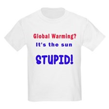 There is no global warming T-Shirt
