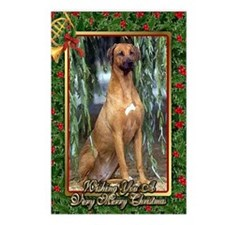 Rhodesian Ridgeback Dog C Postcards (Package of 8)