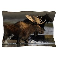 moose splashing in the water Pillow Case