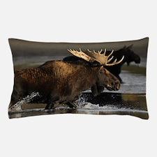 moose splashing in the water Pillow Case