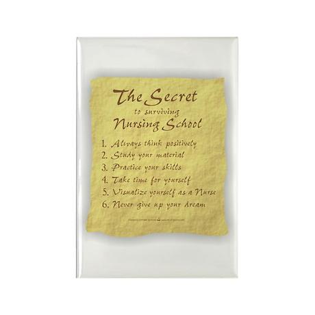The Secret to Nursing School Rectangle Magnet (10