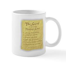 The Secret to Nursing School Small Mug
