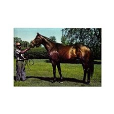 Thoroughbred Racehorse Watercolor Rectangle Magnet