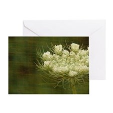 Queen Anne Lace Greeting Card