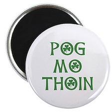 Pog Mo Thoin Shamrock Magnet