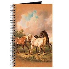 Stallion Horse Trio Journal