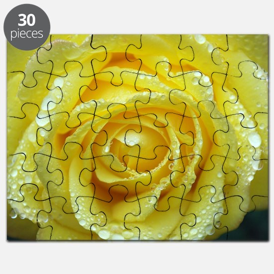 Yellow Rose Puzzle