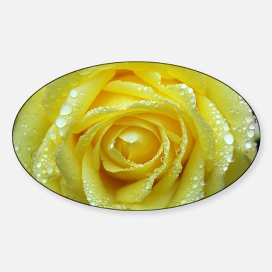 Yellow Rose Sticker (Oval)