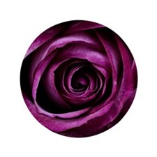 "Purple Rose 3.5"" Button"
