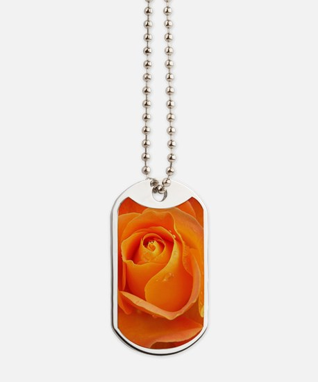 Orange Rose Dog Tags