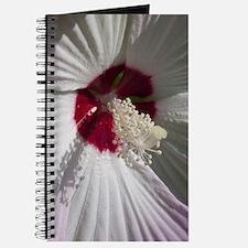 Hibiscus Flower Journal