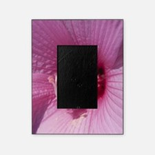 Hibiscus Flower Picture Frame