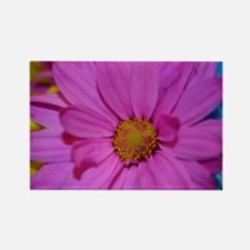 Purple Flower Rectangle Magnet