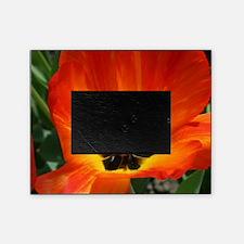 Orange Flower Picture Frame