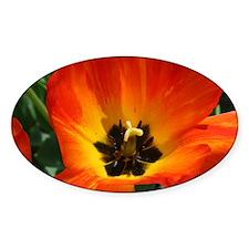 Orange Flower Decal