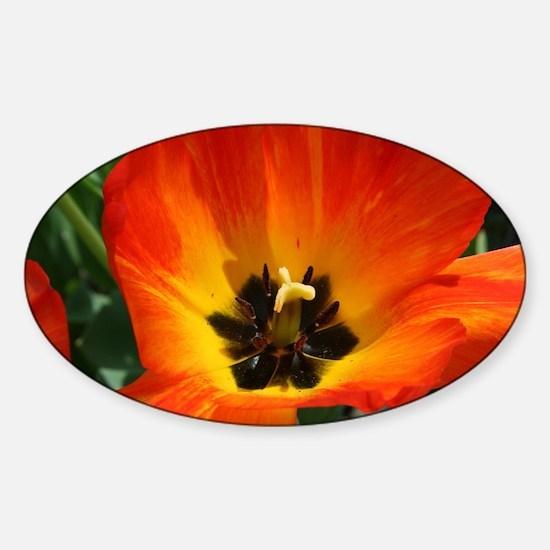 Orange Flower Sticker (Oval)