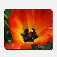 Orange Flower Mousepad