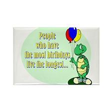 Birthday Turtle Magnets