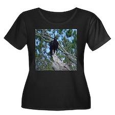 black vulture T