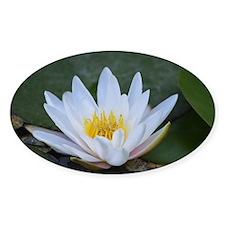 White Lotus Flower Decal