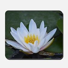 White Lotus Flower Mousepad
