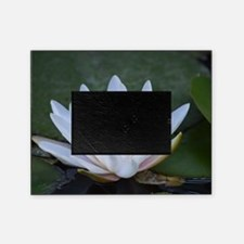 White Lotus Flower Picture Frame