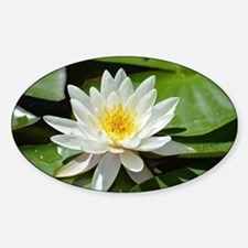 White Lotus Flower Sticker (Oval)