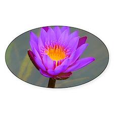 Purple Lotus Flower Decal