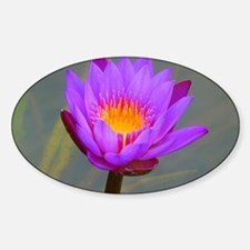 Purple Lotus Flower Sticker (Oval)