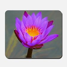Purple Lotus Flower Mousepad