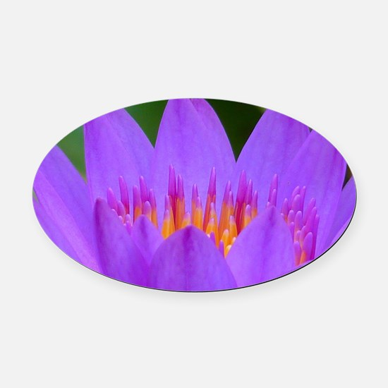 Lotus Flower Oval Car Magnet