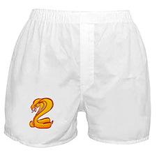 Firesnake Boxer Shorts