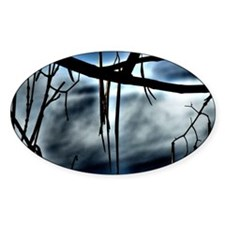 Locust Tree Decal