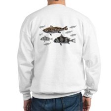 Drum Graphic Jumper