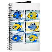 Comme des poissons Journal