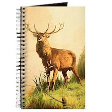 Young Bull Elk Journal
