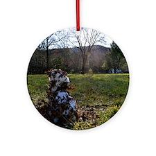 Great Smoky Mountains Calendar Round Ornament