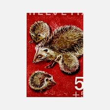 Vintage 1965 Switzerland hedgehog Rectangle Magnet