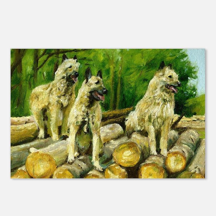 Belgian Laekenois Dog Postcards (Package of 8)