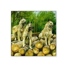 "Belgian Laekenois Dog Square Sticker 3"" x 3"""