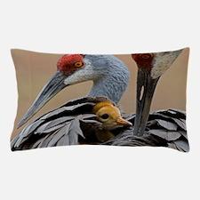 Haven Pillow Case