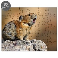 Pika Howling Puzzle