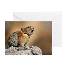 Pika Howling Greeting Card