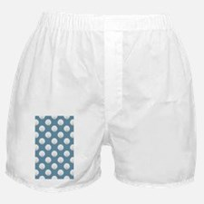 Clamshells 3x5 W Sky Blue Boxer Shorts